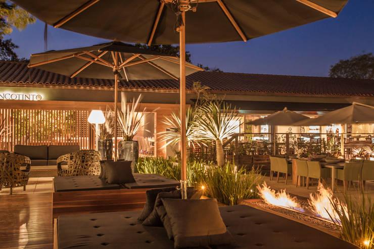 Lounge Jardins minimalistas por Monica Rio Verde Paisagismo Minimalista Derivados de madeira Transparente