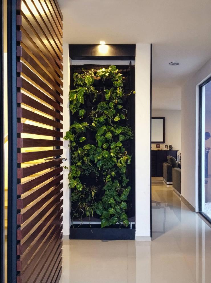 MURO VERDE COMO REMATE VISUAL Pasillos, vestíbulos y escaleras minimalistas de Región 4 Arquitectura Minimalista