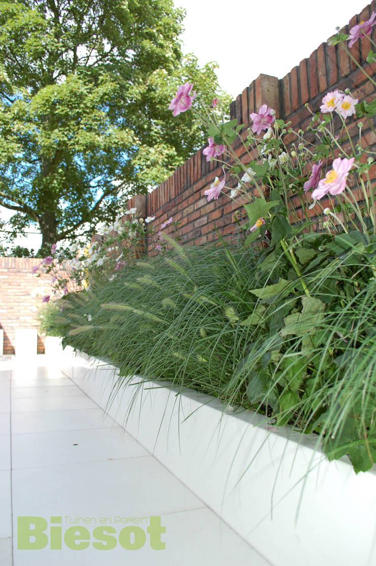 Witte tuin:  Tuin door Biesot, Modern