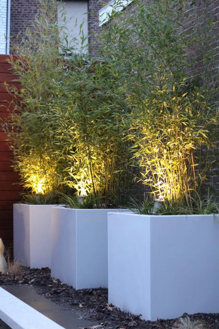 Bloembakken met bamboe:  Tuin door Hoveniersbedrijf Guy Wolfs