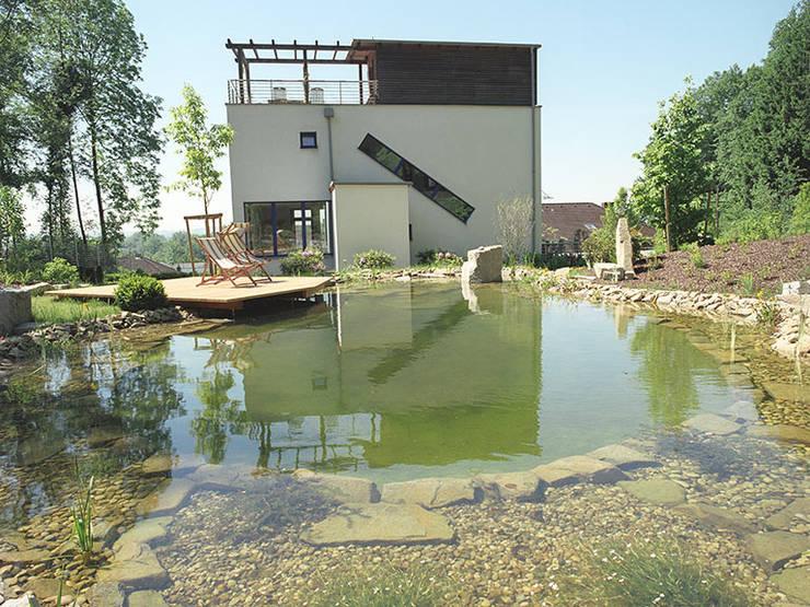 Garten mit Schwimmteich: moderner Garten von Kräftner Landschaftsarchitektur