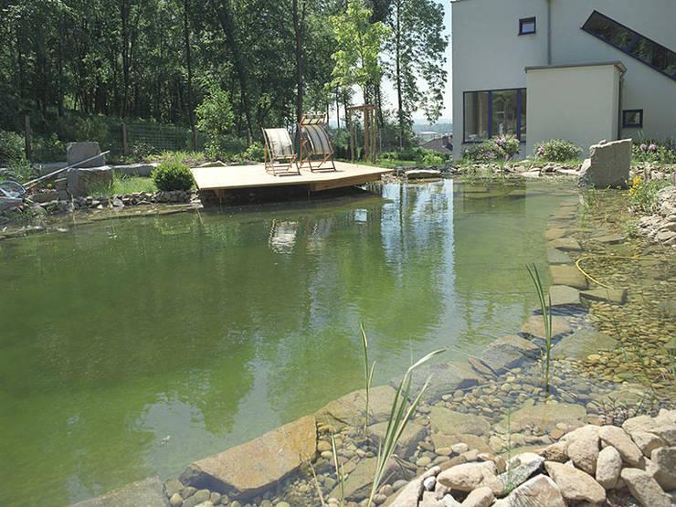 Garten mit Schwimmteich: moderner Pool von Kräftner Landschaftsarchitektur
