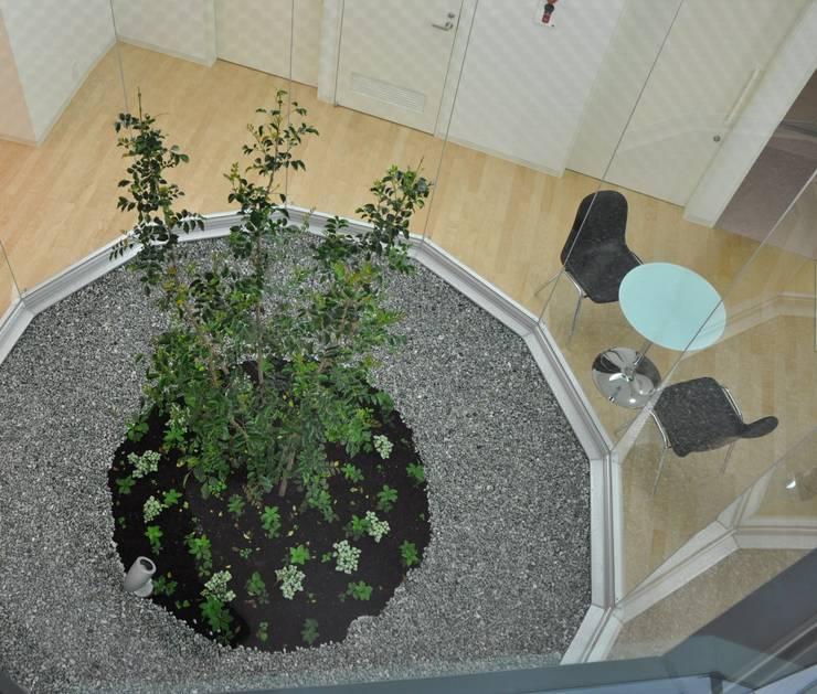 ライトコート俯瞰: 有限会社Y設計室が手掛けた庭です。
