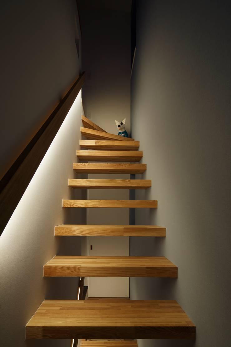 高津の家: 向山建築設計事務所が手掛けた廊下 & 玄関です。
