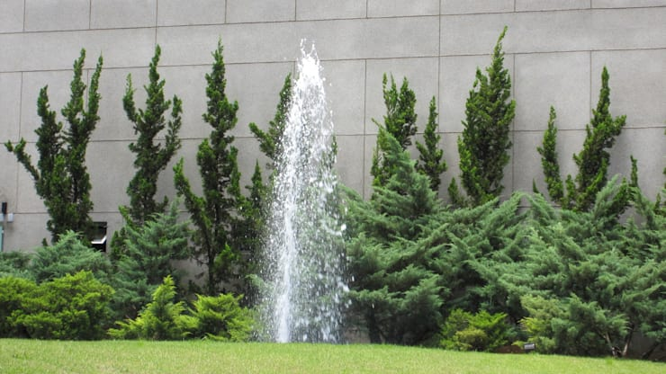Jardins Naturais: Jardins  por Junia Lobo Paisagismo,Campestre