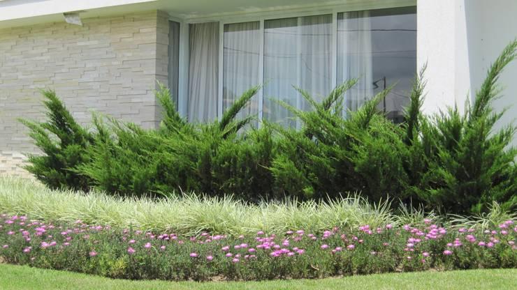 Jardines de estilo  por Junia Lobo Paisagismo