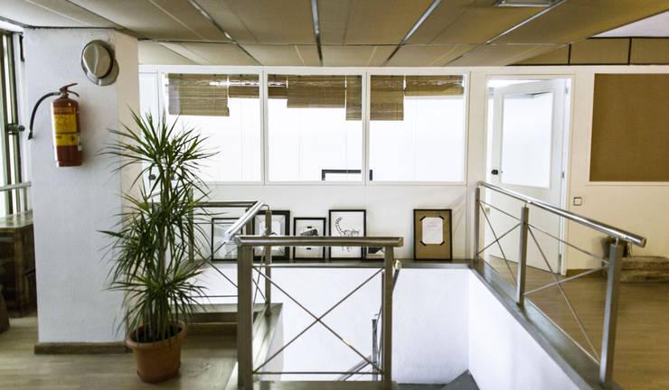 Рабочие кабинеты в . Автор – Bloomint design, Азиатский