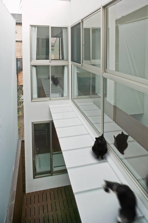 中庭上部 キャットウォーク モダンデザインの テラス の 有限会社Y設計室 モダン