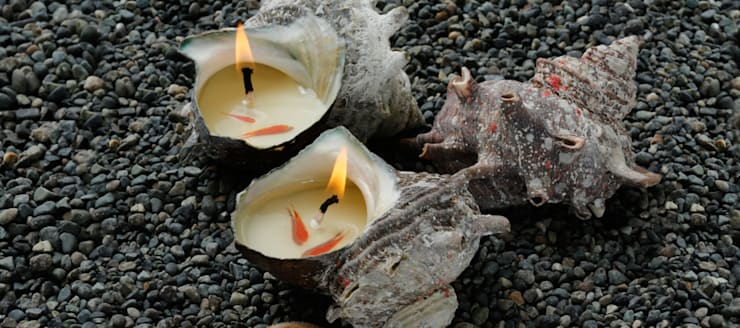 소라캔들: 물고기를 품은 소이캔들의  거실