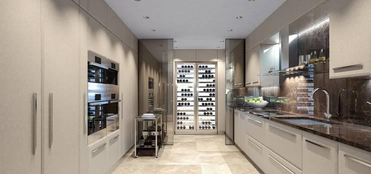 Интерьер двухуровневой квартиры, Швейцария, Локарно: Кухни в . Автор – LOFTING