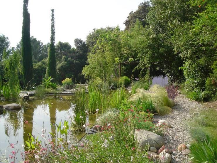 Estanque de Girona: Jardines de estilo  por abpaisajismo