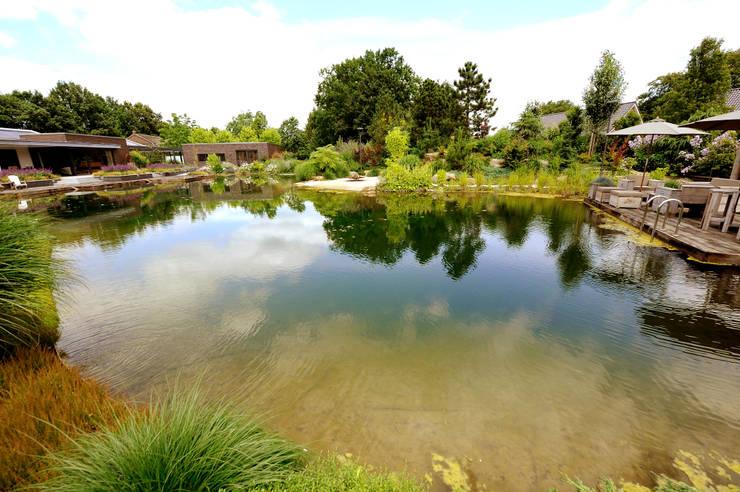 Zwemvijver Weert:  Tuin door Tuindesign & Styling Ves Reynders, Modern