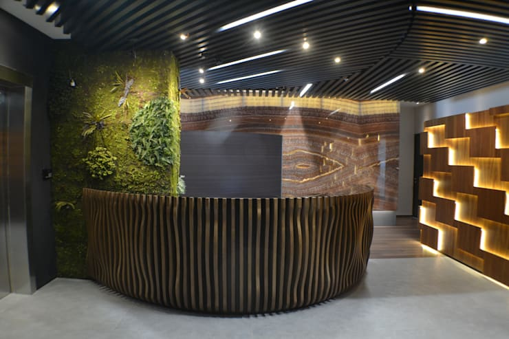Recepción: Oficinas y tiendas de estilo  por Maka Arquitectura