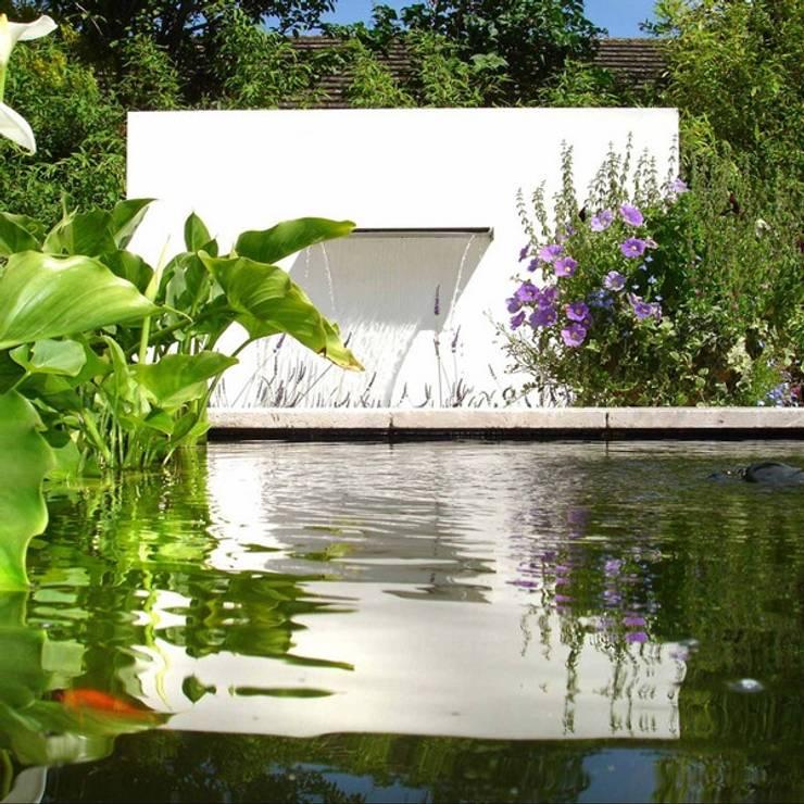 Jardín de estilo  por SO GARDEN