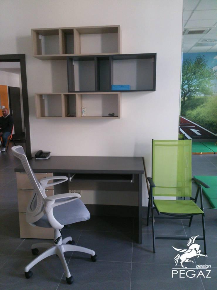 Miejsce pracy - projekt biurka i szafek: styl , w kategorii Pomieszczenia biurowe i magazynowe zaprojektowany przez Pegaz Design Justyna Łuczak - Gręda