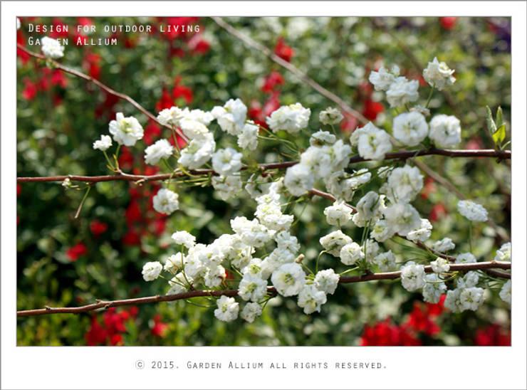 2015 고양꽃박람회 오순도순정원 연인: Garden Studio Allium의  정원