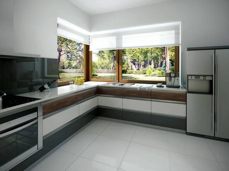 Wnętrze projektu Jaspis 6: styl , w kategorii Kuchnia zaprojektowany przez Biuro Projektów MTM Styl - domywstylu.pl