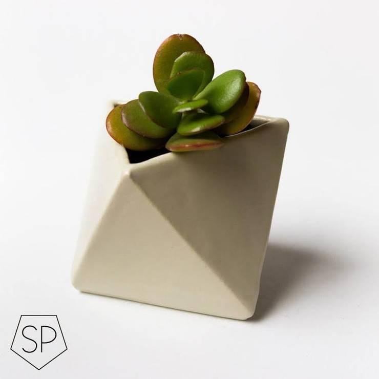 Macetas de cerámica: Livings de estilo moderno por Sólido Platónico