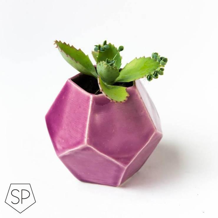 Macetas de cerámica: Jardines de estilo moderno por Sólido Platónico