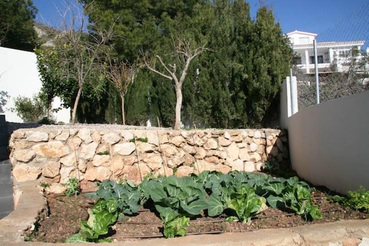 villa en el limonar malaga: Jardines de estilo moderno de Architect Hugo Castro  - HC Estudio  Arquitectura y Decoración
