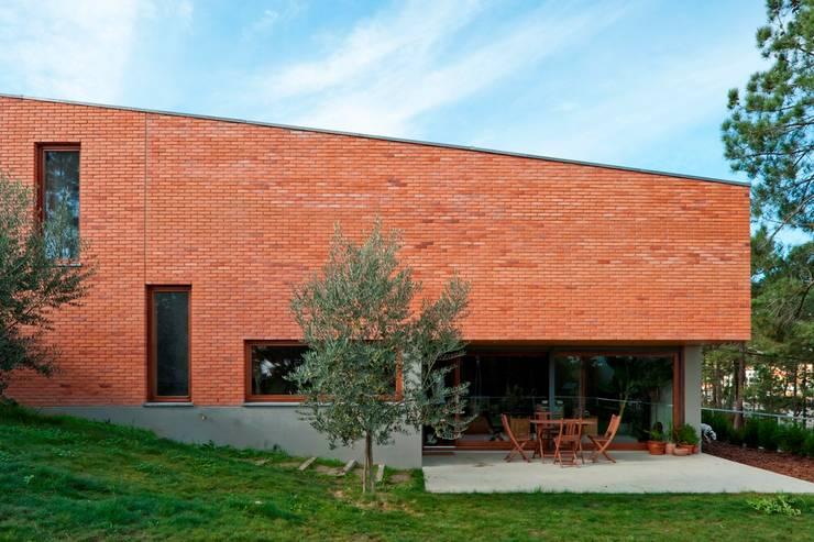 Casa Conde: Casas modernas por SAMF Arquitectos