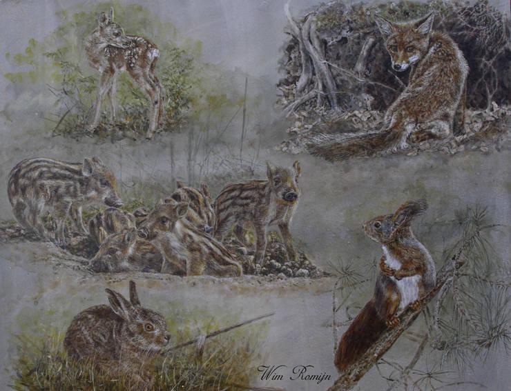 Jonge bos- en velddieren:  Kunst  door Wim Romijn Art