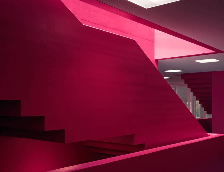 Scuole in stile di Schneider Gmür Architekten