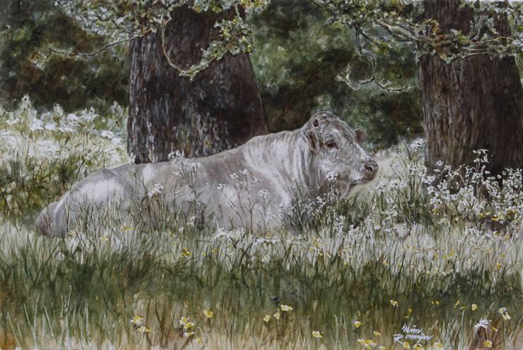 Piemontese stier in de schaduw:  Kunst  door Wim Romijn Art