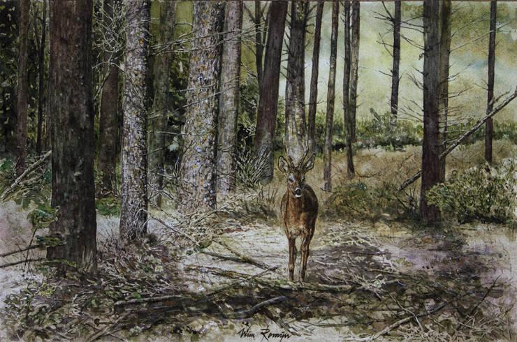 Reebok in douglasbos:   door Wim Romijn Art, Landelijk Papier
