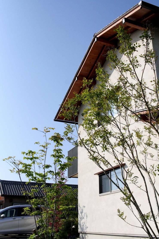 まかないや(賄家): 大林勇設計事務所が手掛けた庭です。