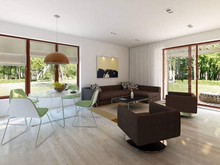 Modern Living Room by Biuro Projektów MTM Styl - domywstylu.pl Modern