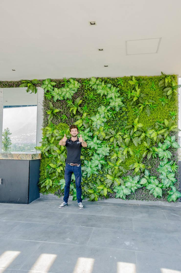 Vườn theo HUICHOL, Hiện đại