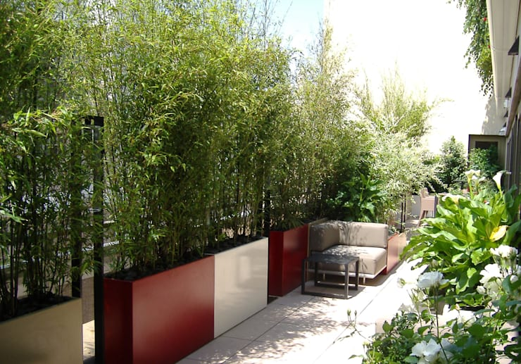 modern Garden by ATELIER SO GREEN