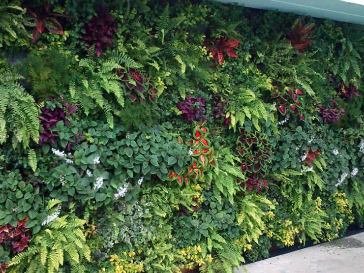 Jardines Verticales: Casas de estilo  por HUICHOL