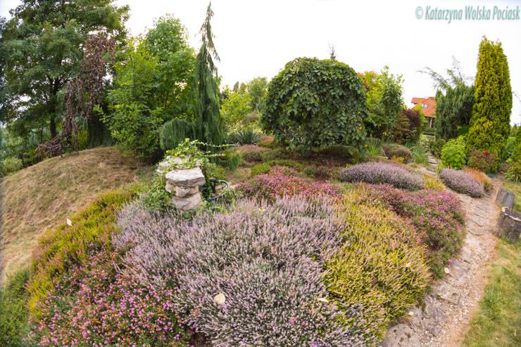 Kwitnące wrzosy: styl , w kategorii Ogród zaprojektowany przez Centrum ogrodnicze Ogrody ResGal,