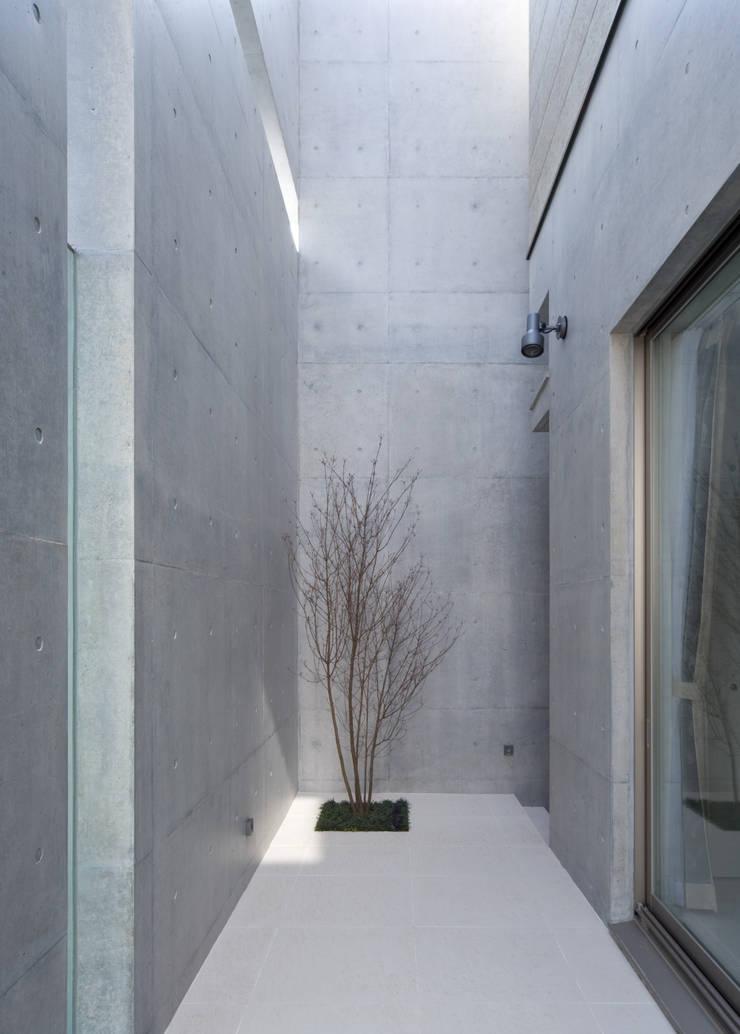 シンボルツリー: 本田建築設計事務所が手掛けたテラス・ベランダです。