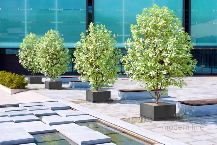 Donica Regular z podstawką: styl , w kategorii Ogród zaprojektowany przez Modern Line