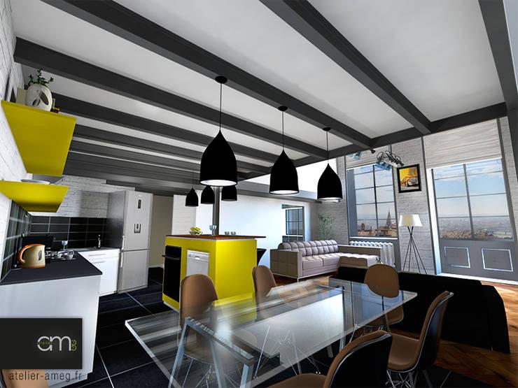 Appartement Croix Rousse (Lyon 4e): Salle à manger de style  par atelier AMEG