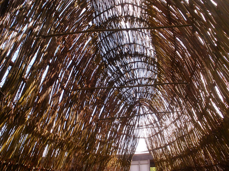 Shephard Shelter: Jardins  por Terrapalha
