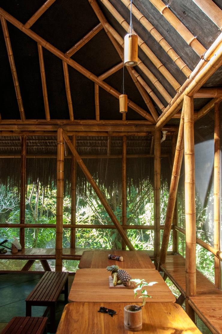 Universo Pol – Morro de San Pablo: Comedores de estilo  por IR arquitectura