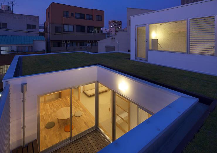 西田辺の家・ネコと夫婦の家: 大野アトリエが手掛けた庭です。