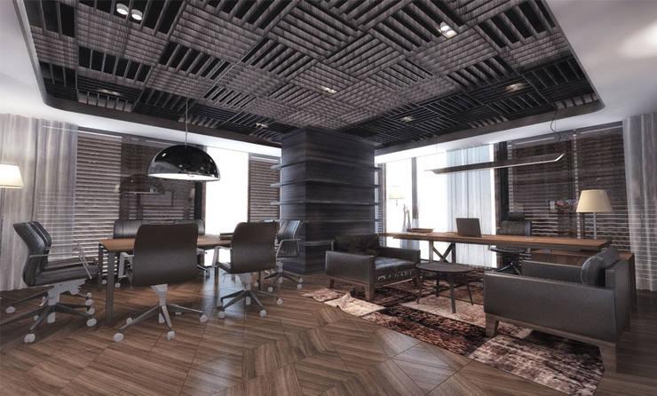 Studio Vertebra – Novawood:  tarz Çalışma Odası