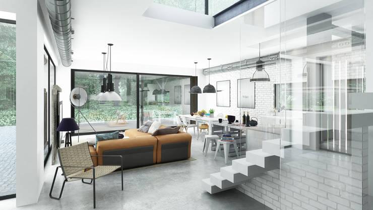 Projekty domów - House x06: styl , w kategorii Salon zaprojektowany przez Majchrzak Pracownia Projektowa