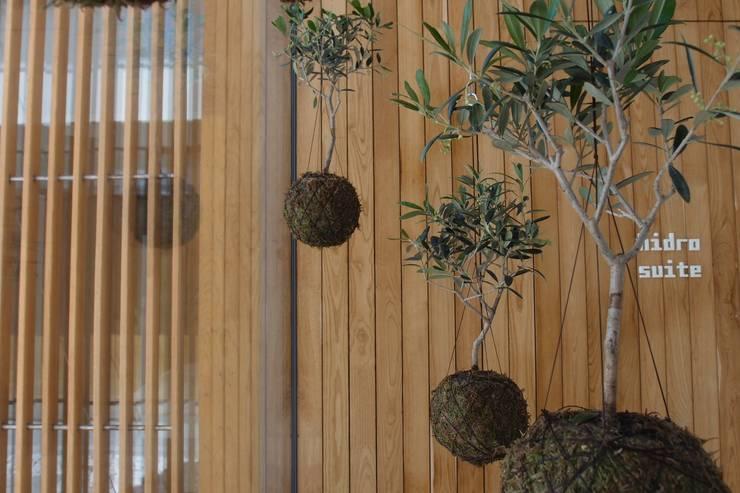 Instalação de plantas suspensas fiu no Hotel Minho: Jardins  por fiu jardins, lda.