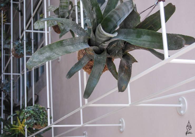 Instalação de plantas fiu suspensas no My Story Hostel: Jardins  por fiu jardins, lda.