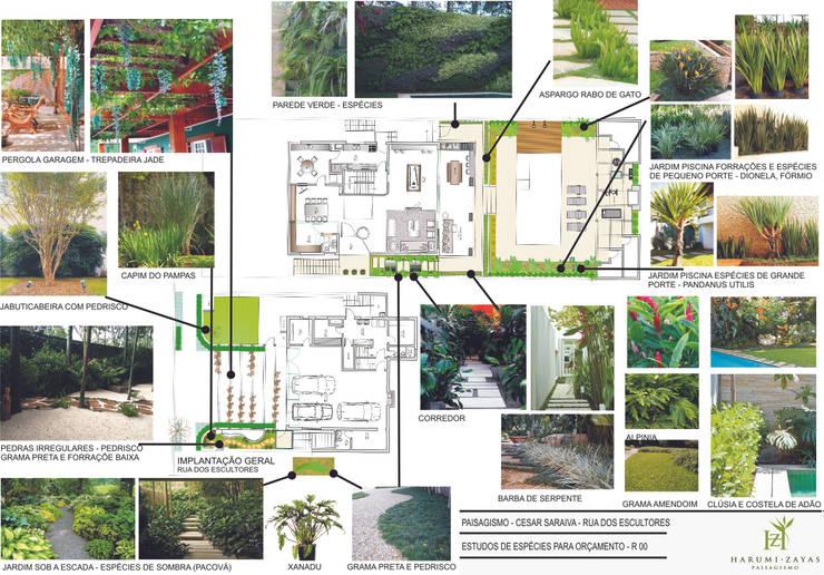 Apresentação do Projeto - Referências e espécies: Terraços  por HZ Paisagismo