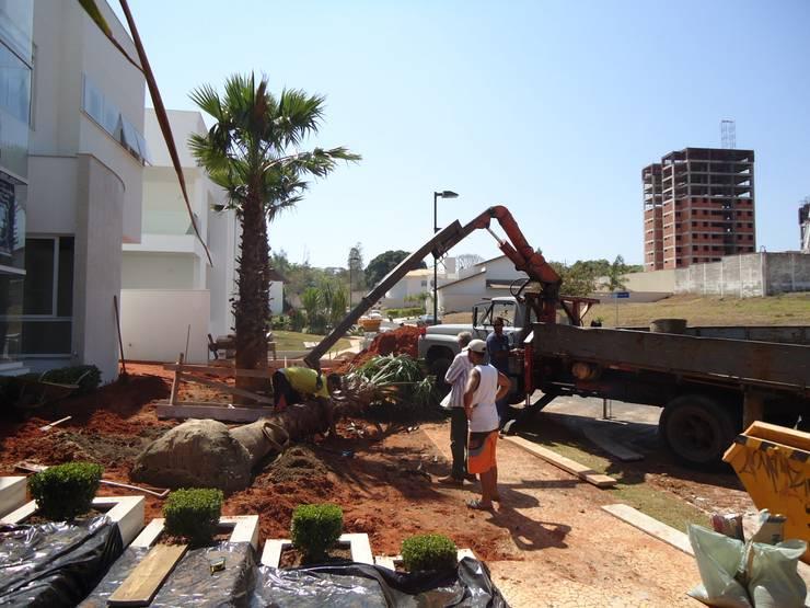 Implatanção: Jardins  por HZ Paisagismo,