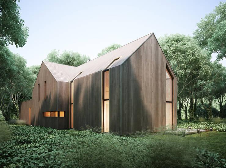 modern Houses by Majchrzak Pracownia Projektowa
