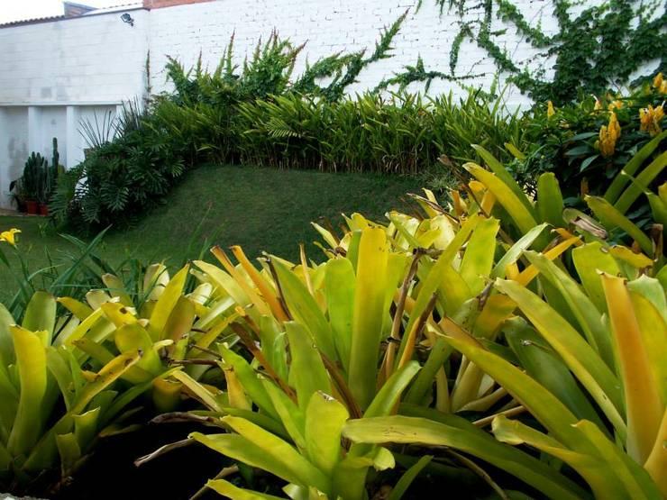 Projeto C.M.: Jardins  por Amaury Neto Paisagismo
