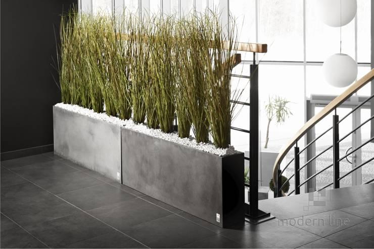 Betonowe donice: styl , w kategorii Korytarz, przedpokój zaprojektowany przez Modern Line
